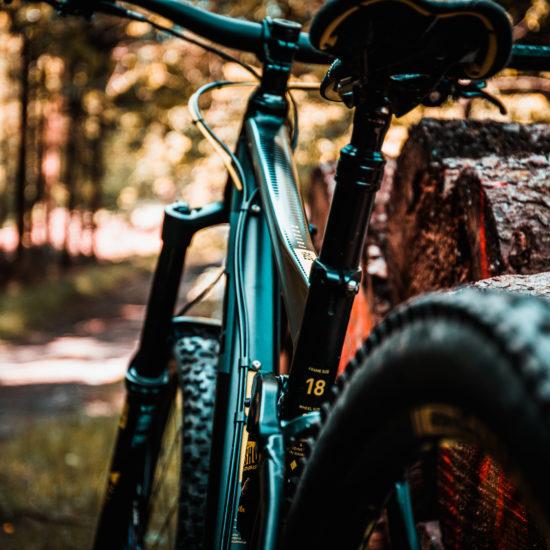 Bike im Wald